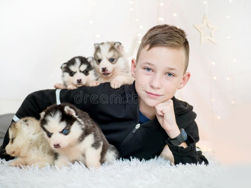 Ragazzino felice che si trova con i cuccioli del husky su fondo bianco fotografia stock libera da diritti