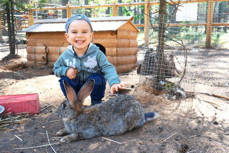 Ragazzino felice e sorridente che segna un coniglio fotografie stock libere da diritti