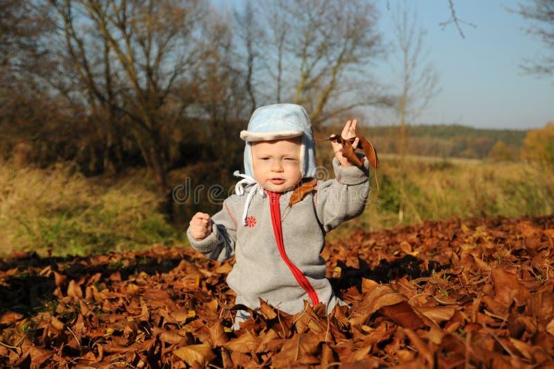 Ragazzino sveglio che gioca con le foglie gialle di autunno fotografia stock