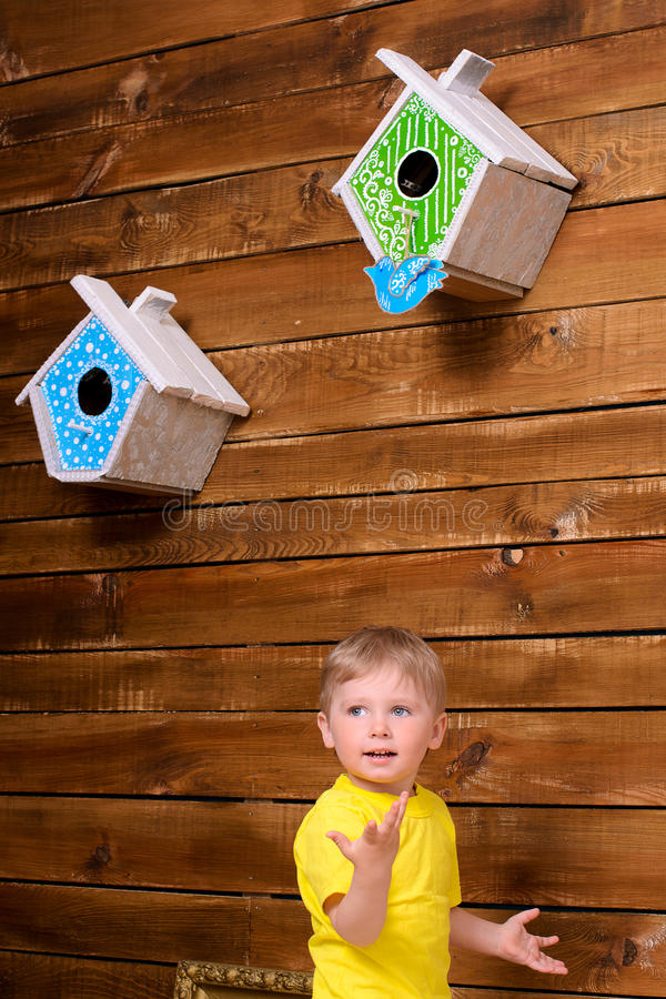 Ragazzo attivo e nidi per deporre le uova sulla parete fotografie stock