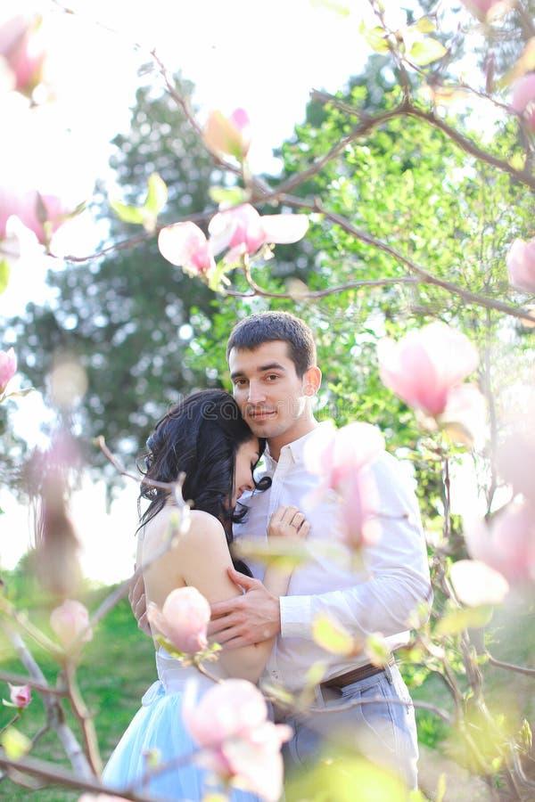 Ragazzo bello castana che abbraccia e che bacia ragazza caucasica vicino alla magnolia immagini stock