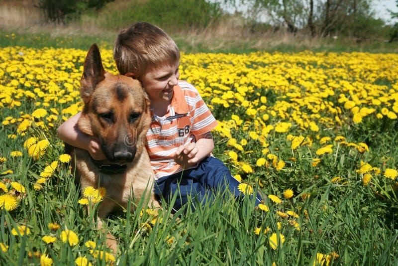 Ragazzo, cane e prato giallo. immagini stock