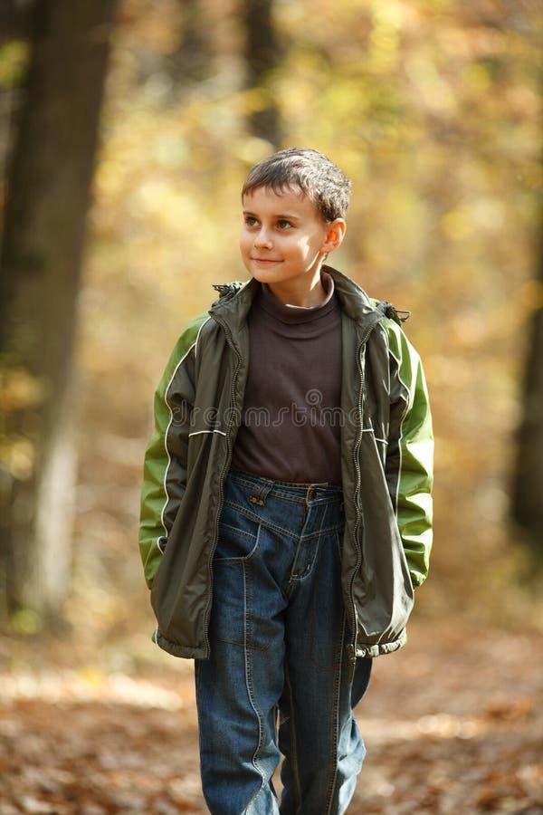 Ragazzo che cammina attraverso la foresta fotografia stock libera da diritti