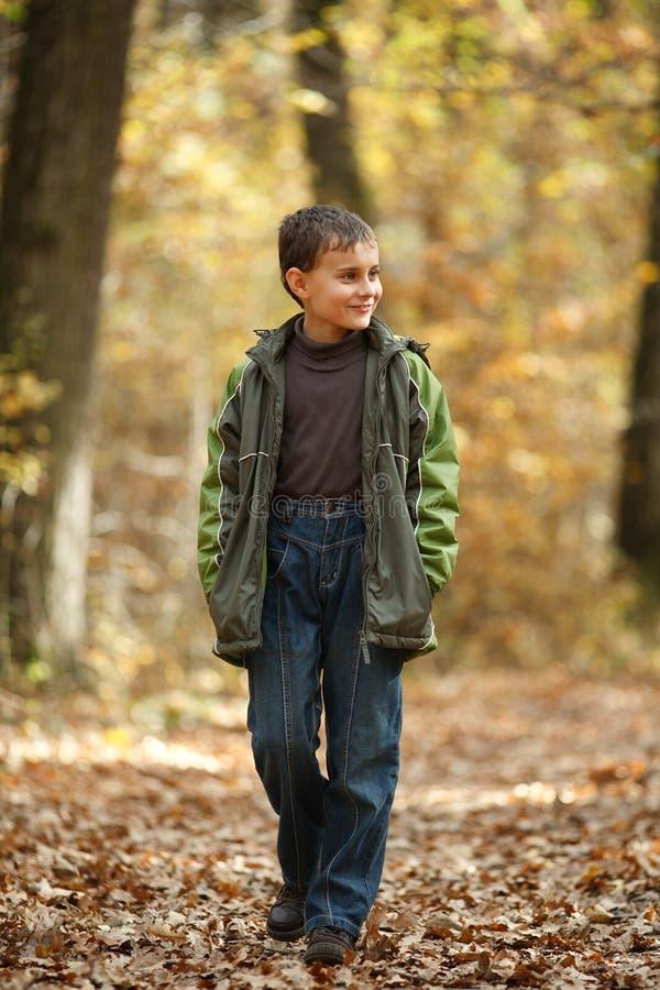 Ragazzo che cammina attraverso la foresta fotografie stock libere da diritti