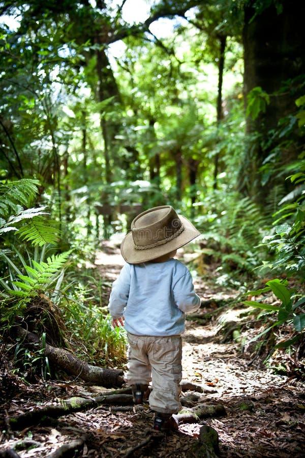 Ragazzo che cammina nella foresta immagini stock libere da diritti