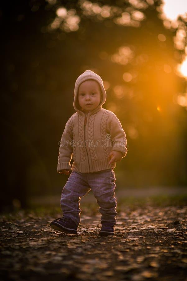 Ragazzo che cammina nella sosta fotografia stock