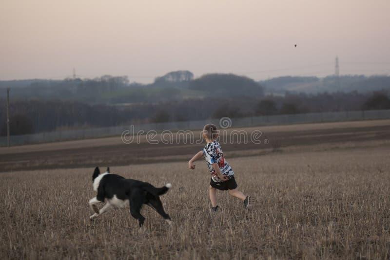 Ragazzo che gioca con il cane della famiglia fotografie stock