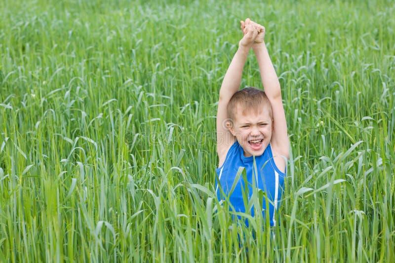 Ragazzo che grida nell'erba fotografia stock libera da diritti