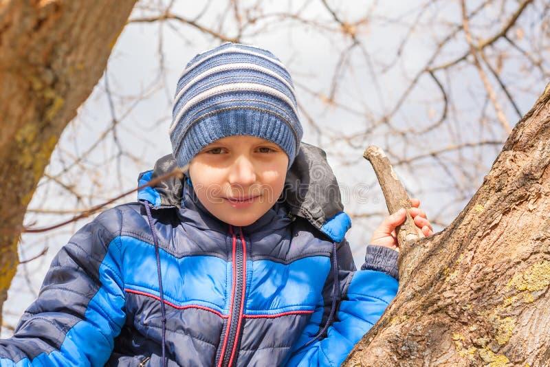 Ragazzo che guarda dall'albero per quello che sta succedendo fotografia stock