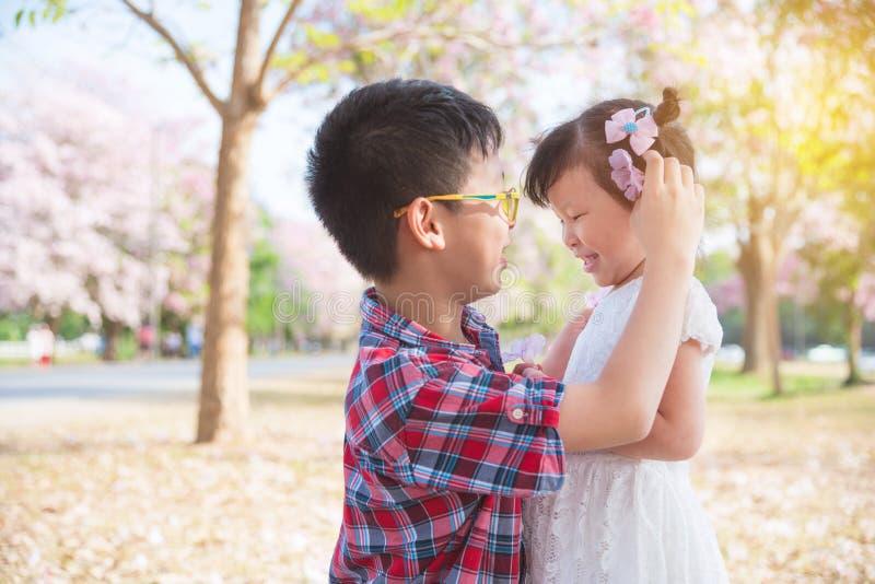 Ragazzo che mette fiore sui suoi capelli del ` s della sorella immagini stock libere da diritti