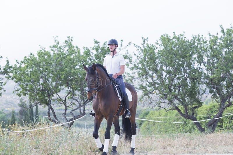 Ragazzo che monta un cavallo fotografia stock libera da diritti
