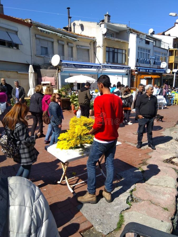 Ragazzo che vende mimosa gialla sulla via immagini stock
