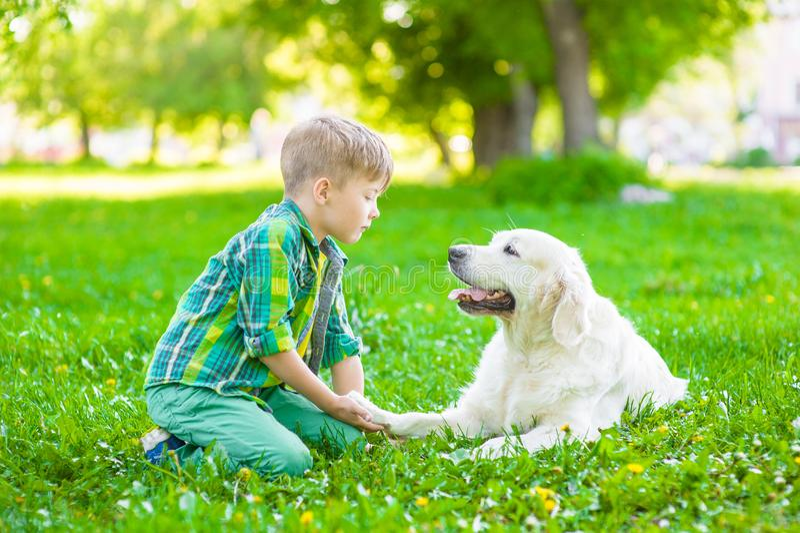 Ragazzo con il cane su erba verde fotografia stock libera da diritti