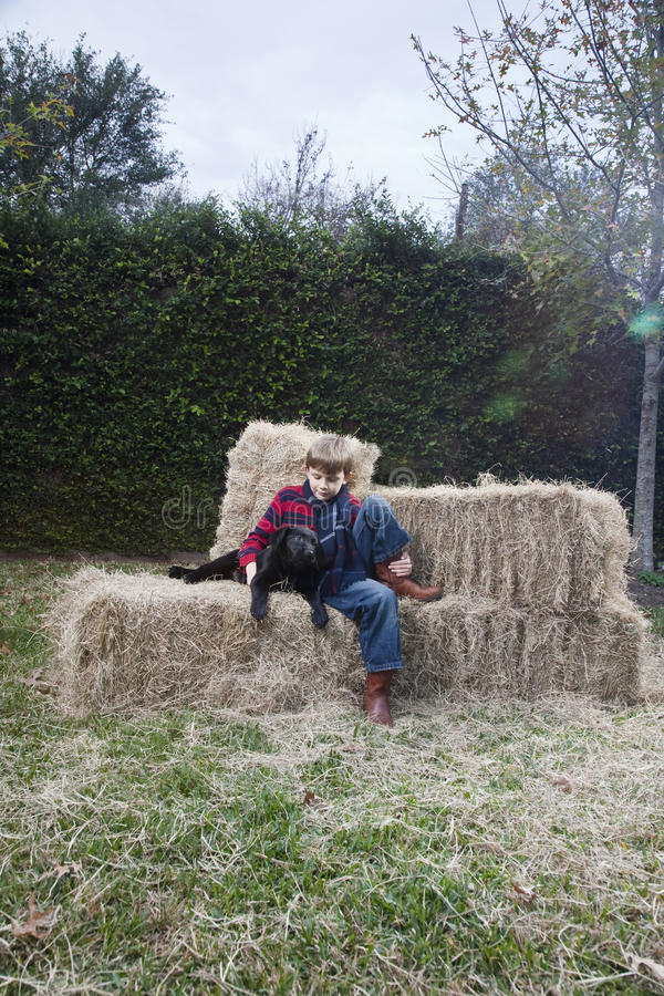 Ragazzo con il cane su Hay Bale fotografia stock libera da diritti