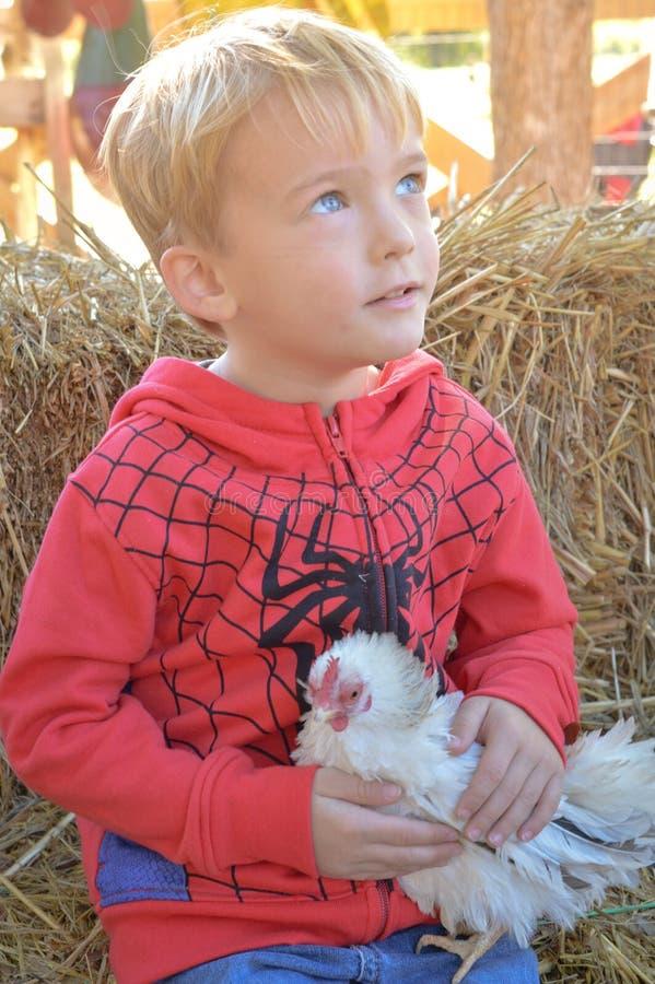 Ragazzo con il pollo fotografia stock