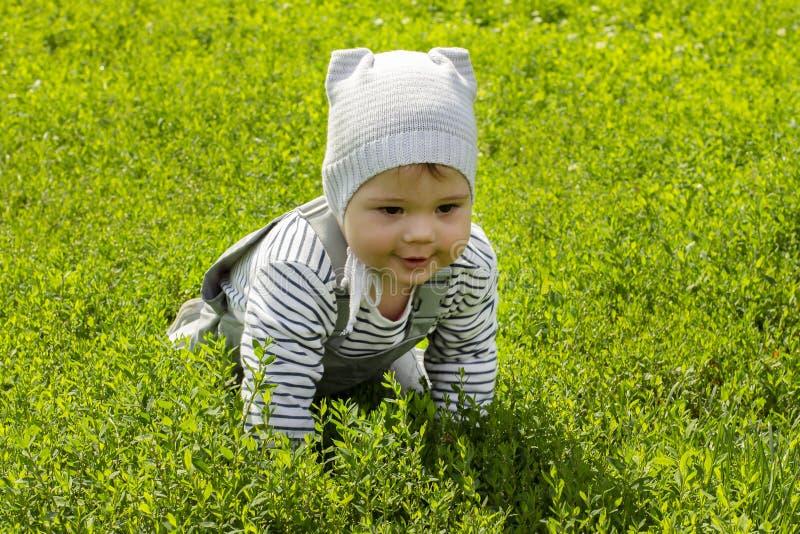 Ragazzo della neonata 1 anno che striscia sul prato inglese nel parco fotografie stock libere da diritti