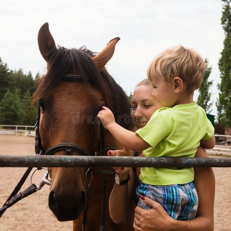 Ragazzo di comunicazione con il cavallo all'aperto fotografia stock