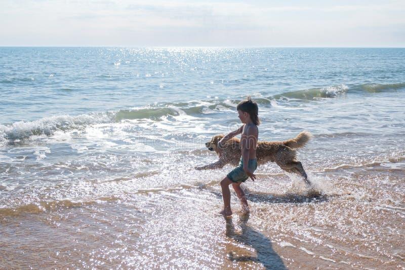 Ragazzo di 6y negli shorts verdi che corre al mare con il suo cane Labrador Retrieveron del fawn immagine stock libera da diritti