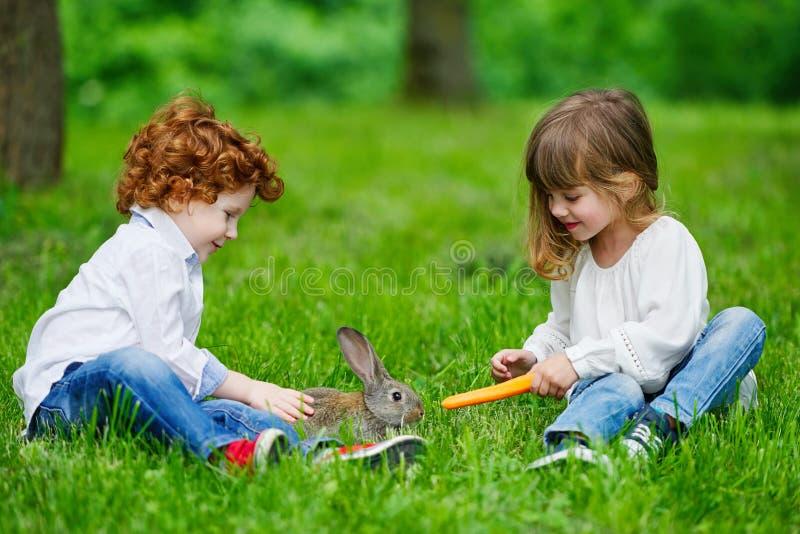 Ragazzo e ragazza che giocano con il coniglio fotografia stock libera da diritti