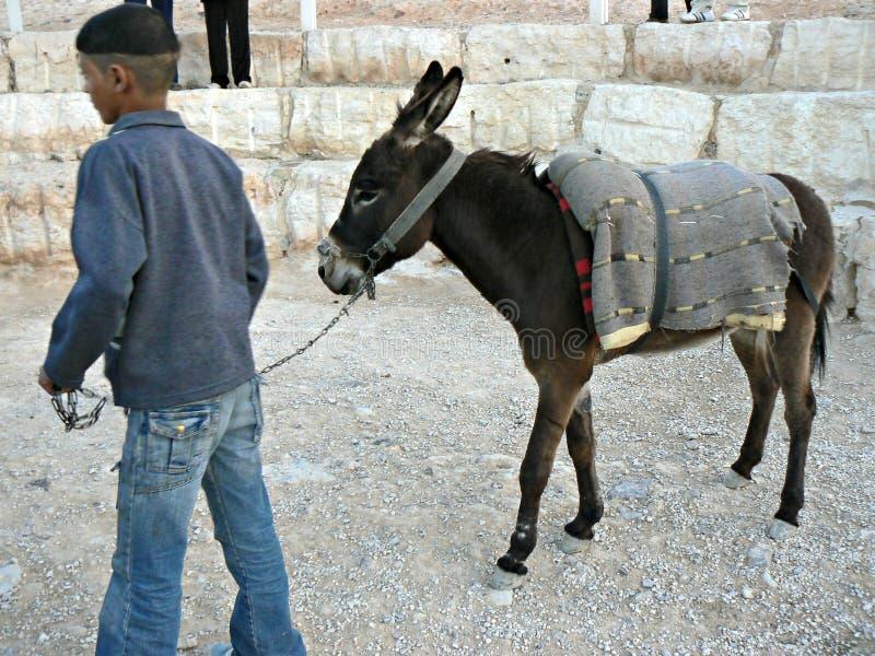 Ragazzo ed asino beduini fotografia stock libera da diritti