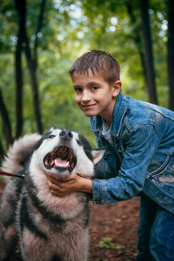 Ragazzo ed il suo husky del cane sui precedenti delle foglie in primavera fotografia stock libera da diritti