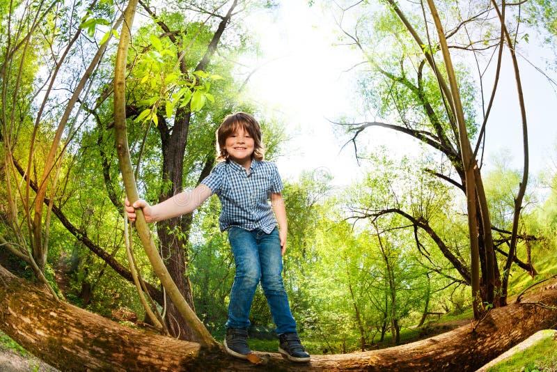 Ragazzo felice divertendosi stare sull'albero caduto fotografia stock