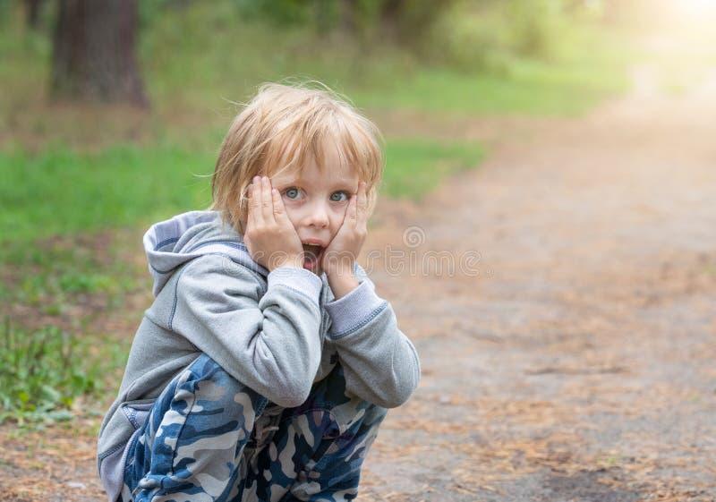 Ragazzo sveglio sorpreso, emozioni e gioia fotografia stock libera da diritti