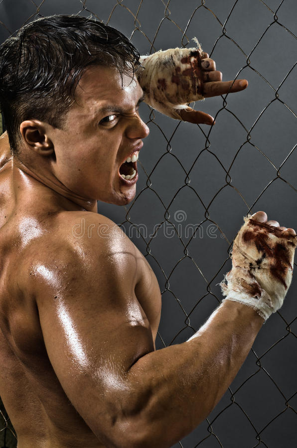 Rage fighter stock images