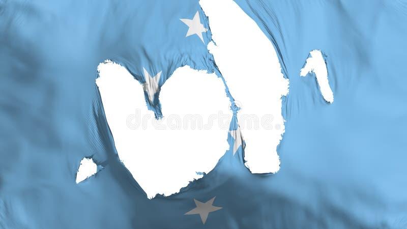 Ragged σημαία της Μικρονησίας ελεύθερη απεικόνιση δικαιώματος