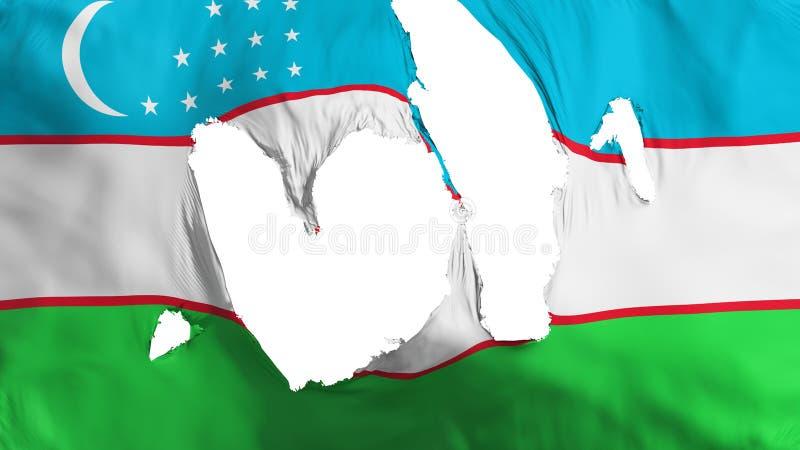 Ragged σημαία του Ουζμπεκιστάν διανυσματική απεικόνιση