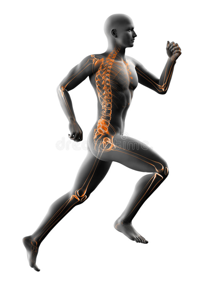 Raggi x correnti dell'uomo su bianco illustrazione vettoriale