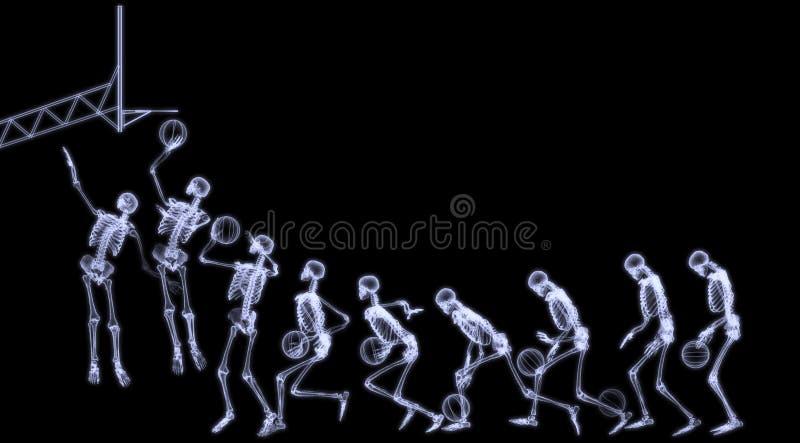 Raggi X di pallacanestro di gioco di scheletro umana immagine stock libera da diritti