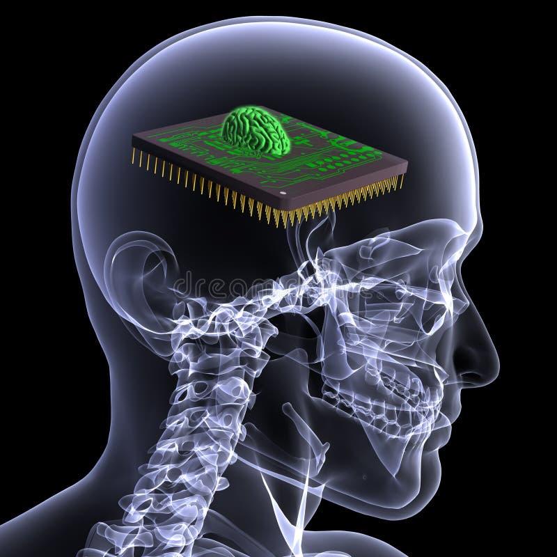 Raggi X di scheletro - cervello del CPU illustrazione vettoriale