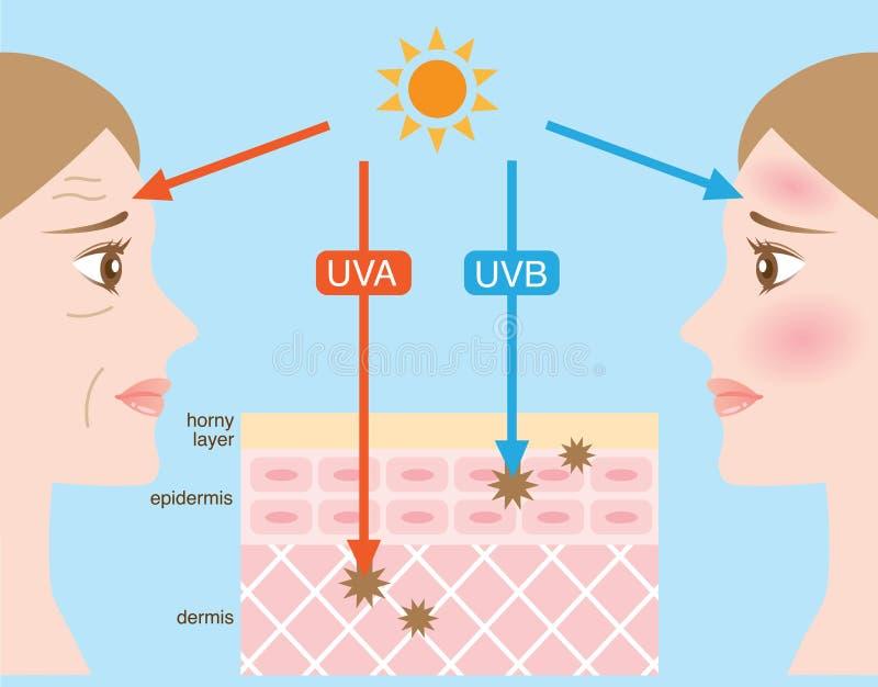 Raggi ultravioletti illustrazione vettoriale