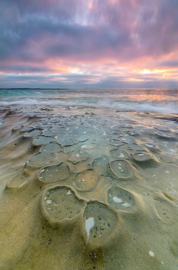 Raggruppamenti di marea di La Jolla fotografie stock