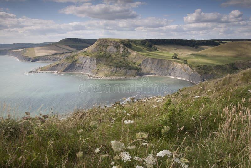 Raggruppamento di Chapmans, Dorset fotografia stock libera da diritti