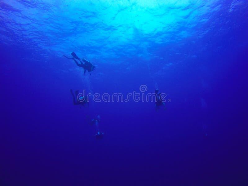 Raggruppi i subaquei che si tuffano underwater in siluetta e sole del mare fotografia stock libera da diritti