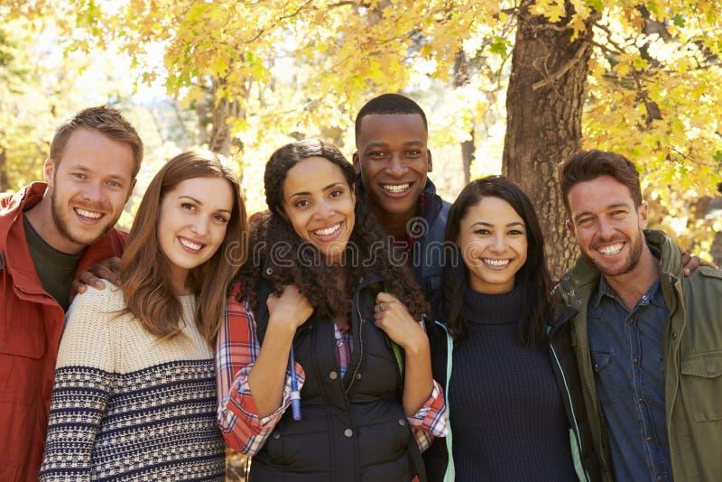 Raggruppi un ritratto di sei amici felici in una regolazione della foresta immagini stock libere da diritti