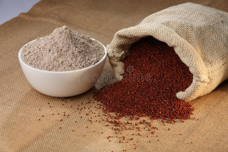 Ragi Flour. Eleusine coracana, or finger millet, is an annual herbaceous plant widely grown as a cereal ..... Ragi flour is made into flatbreads, including thin royalty free stock image