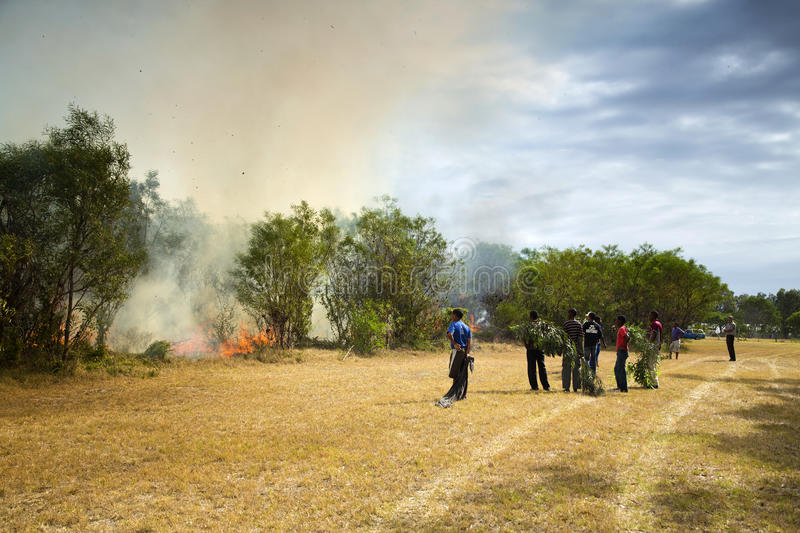 Download Raging Wildfire In Port Elizabeth, South Africa Editorial Photography - Image: 37660807