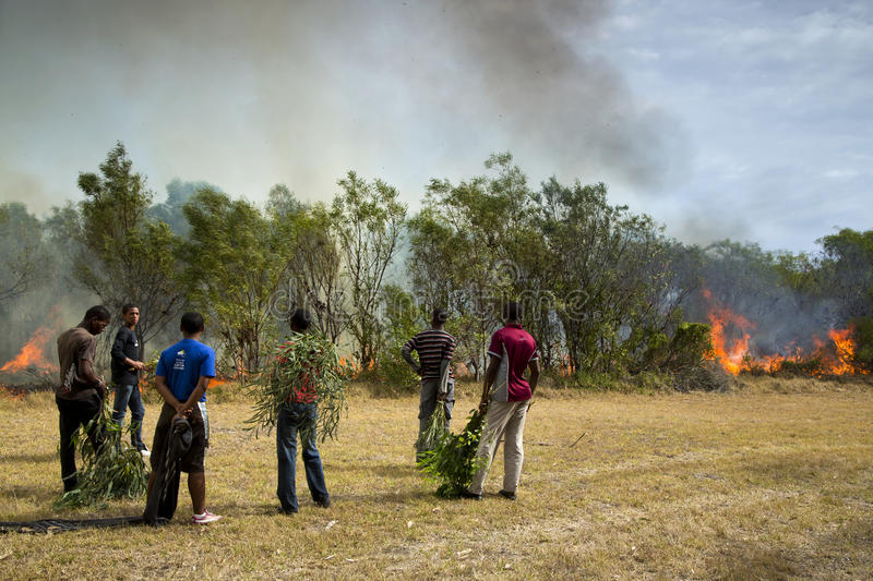 Raging wildfire in Port Elizabeth, South Africa. Adults and children keeping a wildfire under control that is raging near a home for destitute adults and a royalty free stock images