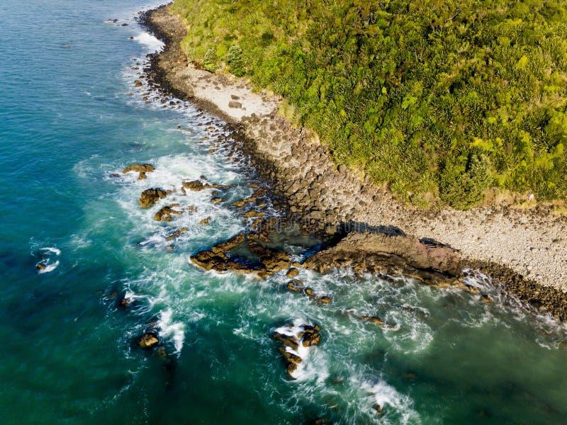 Raglan Новая Зеландия кабеля китов стоковые изображения