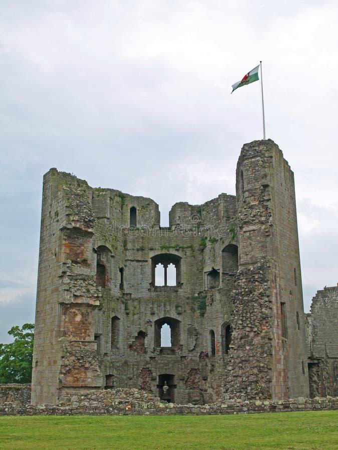 Raglan Castle 2