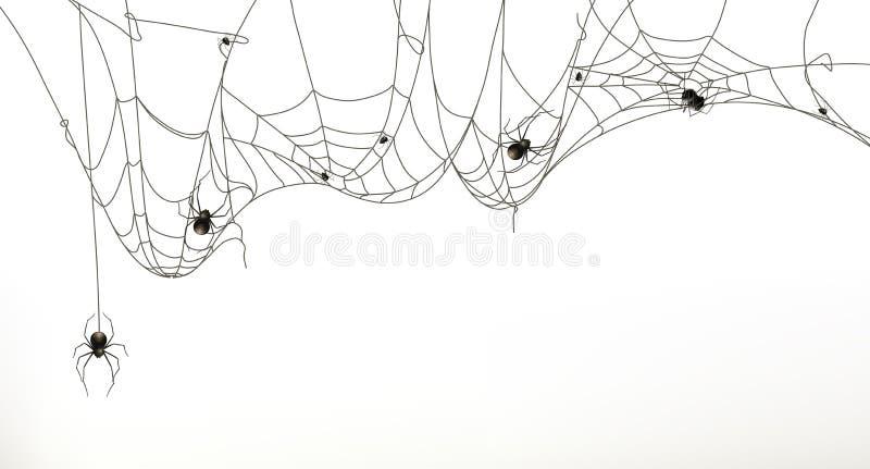 Ragni e ragnatela illustrazione di stock