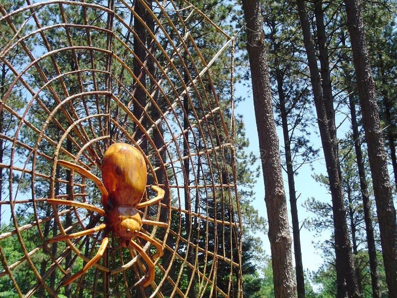 Ragno della foresta fotografie stock libere da diritti
