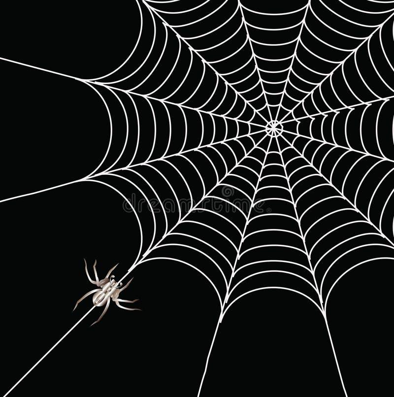 Ragno e un Web immagini stock libere da diritti