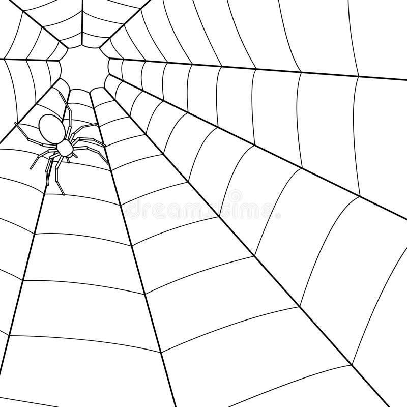 Ragno sulla ragnatela illustrazione vettoriale