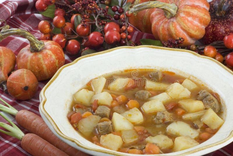 Ragoût de moisson d'automne photo stock