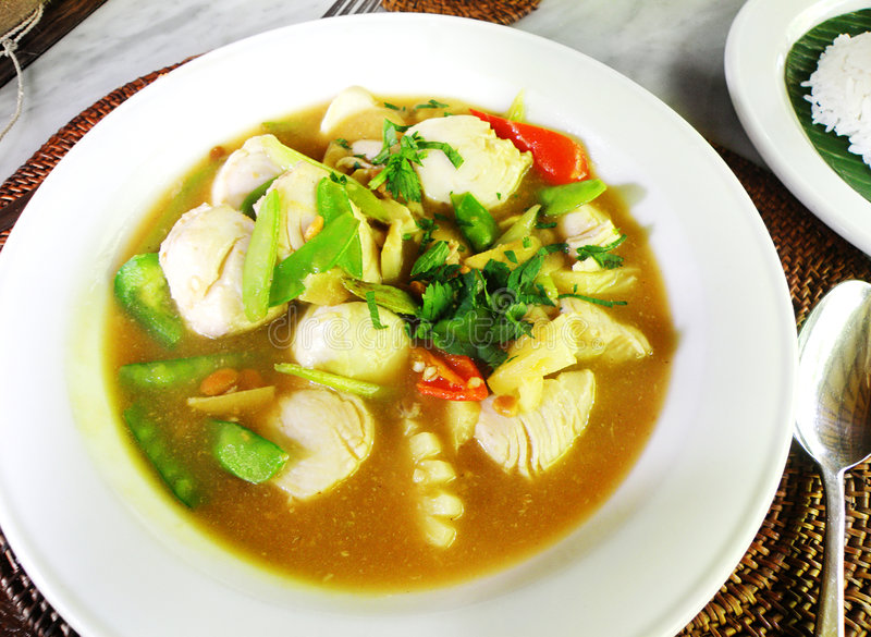 ragoût de poissons ethnique de paraboloïde asiatique images libres de droits