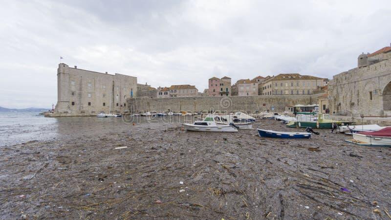 Ragusa, Croazia - settembre 12,2017: Osservi la città di Ragusa cui è una destinazione europea famosa di viaggio in Crotia con un immagini stock libere da diritti